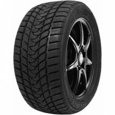 Delinte Winter WD1 215/45 R17 91H