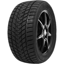 Delinte Winter WD1 235/50 R19 99H