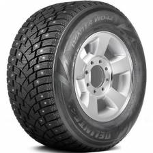 Delinte Winter WD42 225/60 R17 103T