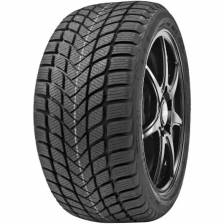 Delinte Winter WD6 205/55 R17 95H