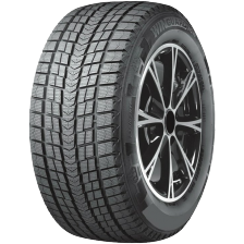 Roadstone Winguard Ice 255/50 R19 107T